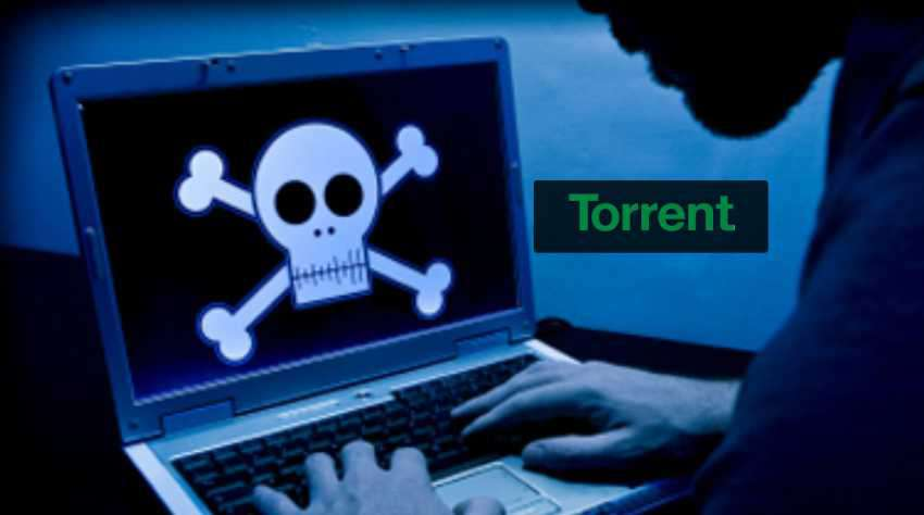 torrent-insights-success.jpg