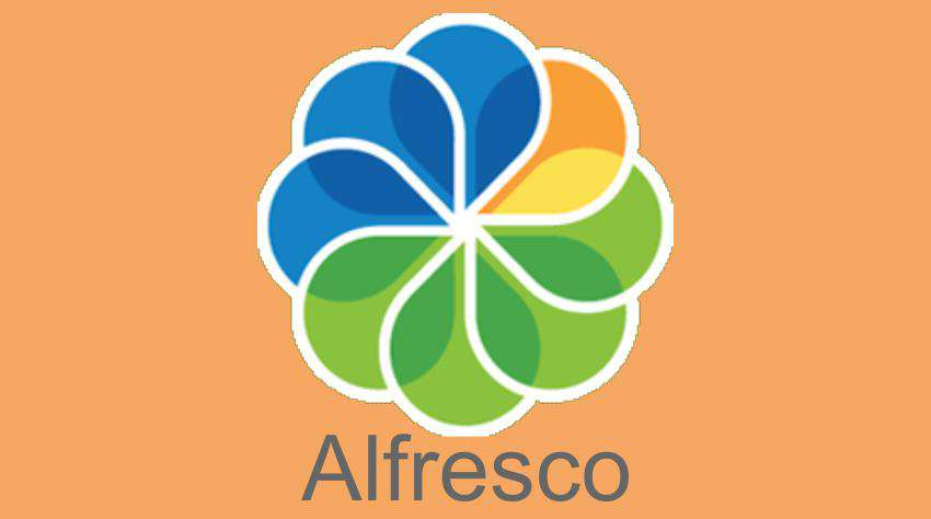 Alfresco - Insights Success