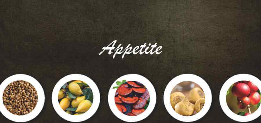 Appetite - Underrated Foods - Insights Success