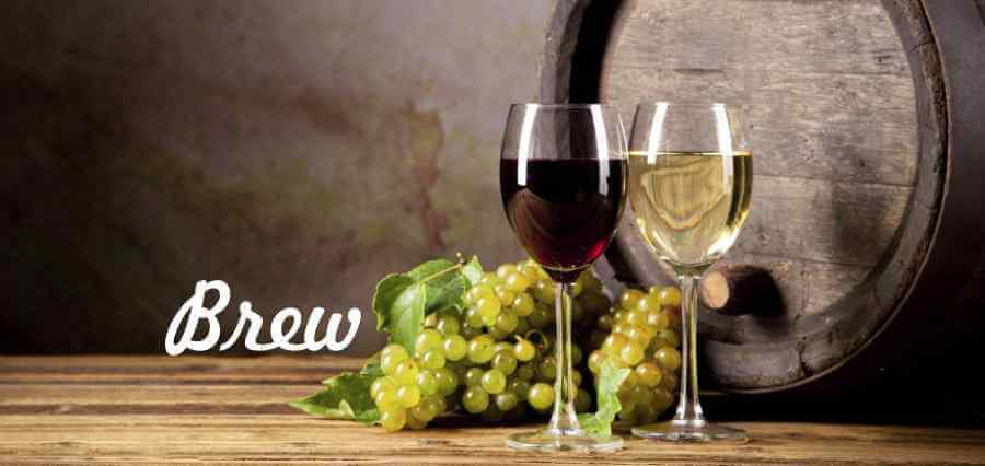 Brew - Wine Sutra - The Art Of Making Wine - Insights Success