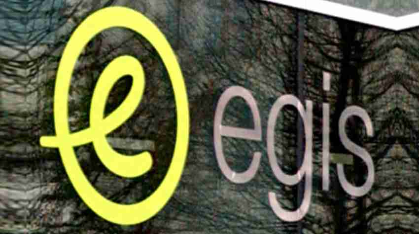 Egis surpasses the one billion euro threshold - Insights-success