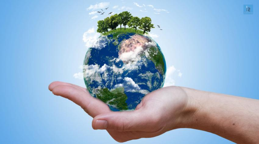 Go Green and Save the Planet! | online business magazine