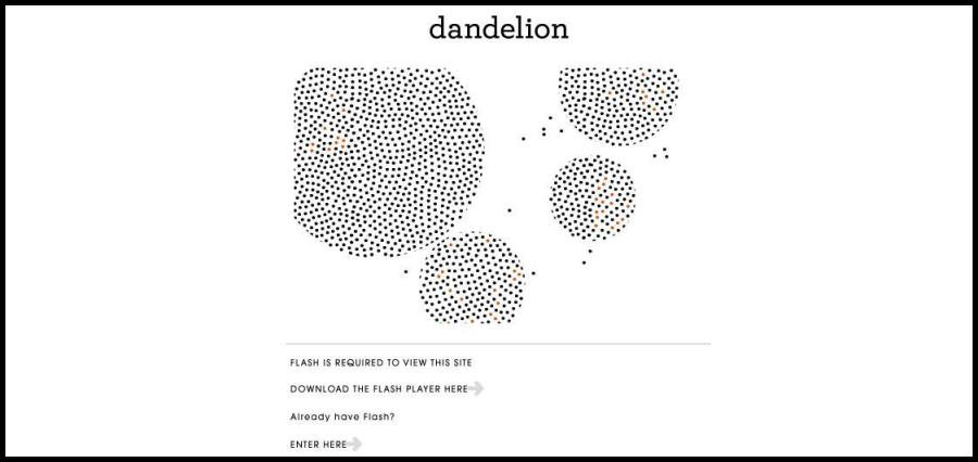 16 Startups To Watch In 2020 - Dandelion