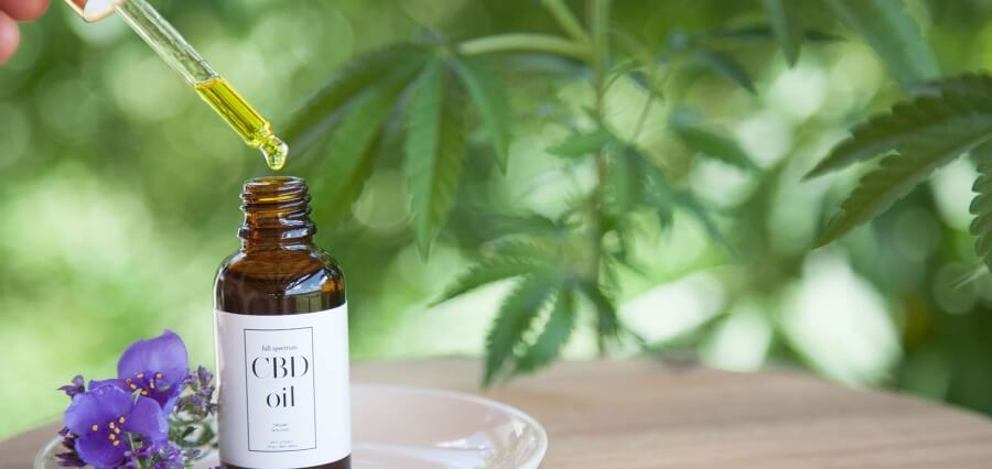 Choose Top Quality CBD Products
