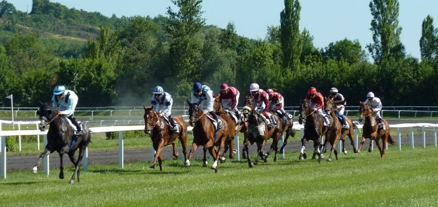Horseracing, one of the oldest watched sport in the world!