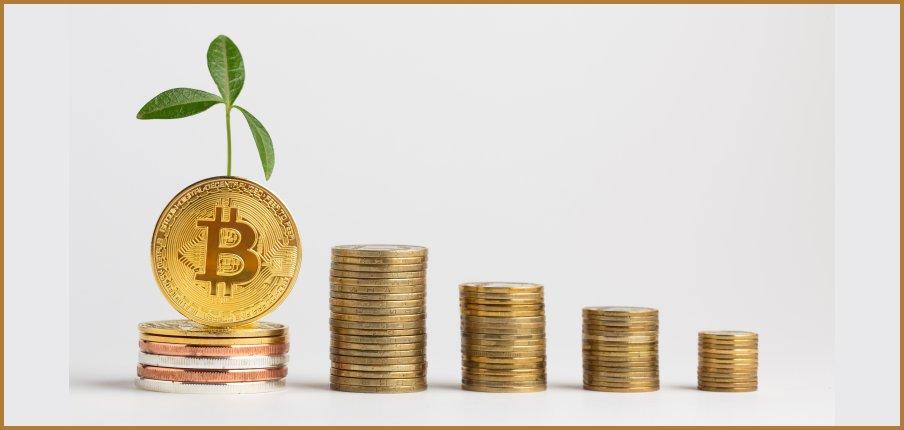 What Drives Bitcoin's Digital Gold Rush