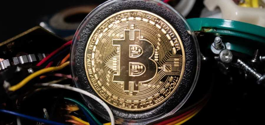 Online Investing, Crypto-currencies, and Online Gaming among Main Interests of Young Generation